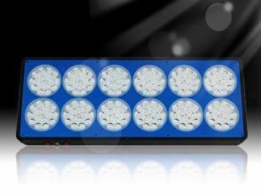 LEON MC12  - new generation LED