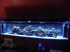 Akvárium na mieru