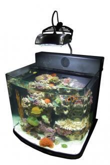 NANO morské akvárium EcoMini 14 (53ℓ) s refugiem
